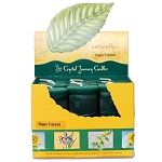 Rain Forest Scented Votive Candles, Box/18