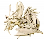 White Sage Loose Leaves & Clusters, 1 lb. Bag