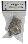 Rose of Jericho, 1 Flower, Packaged, Each