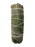 Eucalyptus Smudge Stick - 3-4