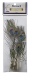Peacock Eye Feathers, Pack of 5, Packaged